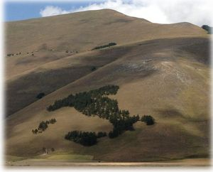 Castelluccio