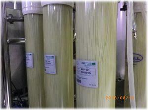 Contesa Spaghetto giapponese